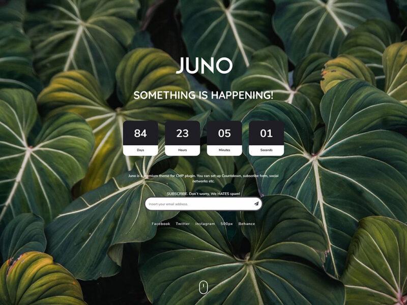 CMP – Juno Theme